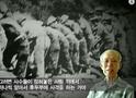 뉴스타파 - 목격자들 11회